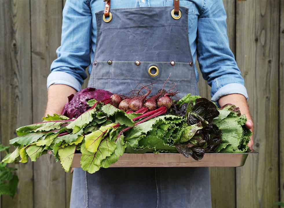 Findus person i jeansskjorta och förkläde håller grönsaker
