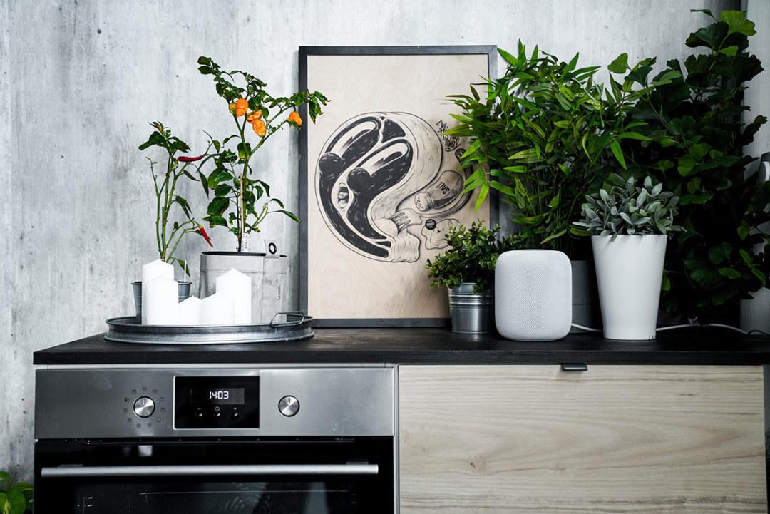 Big South Malmö studiokök för matfotografering chili och växter